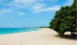 Cuba has unreal beaches. Look at those colors!